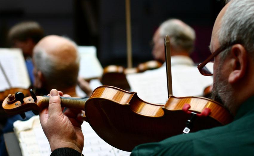Geigenunterricht in Haidhausen Mnchen Zentrum