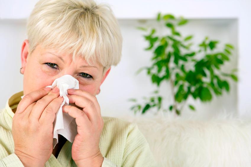 allergie gegen zitrusfrüchte